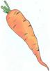 и морковь
